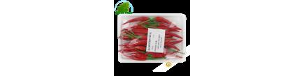 Piment rouge 100g