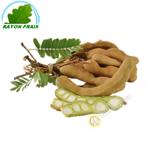 Tamarin vert (barquette)