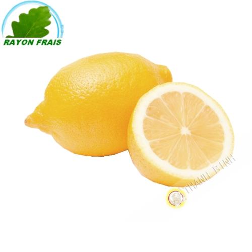 Citron jaune (kg)