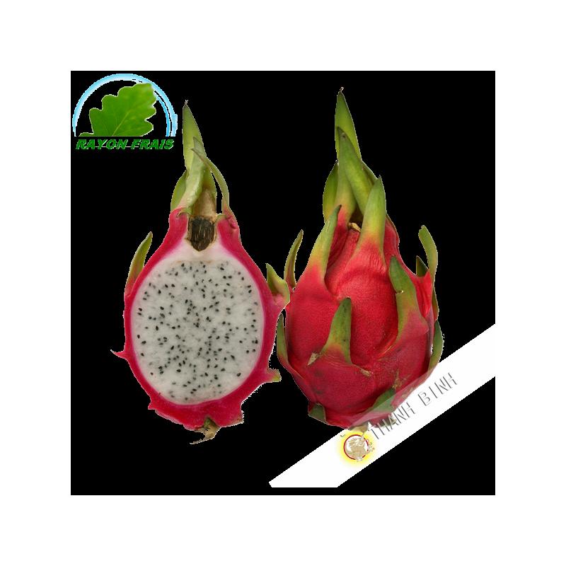 Fruits exotique fruit du dragon pittaya kg - Arbre fruit du dragon ...