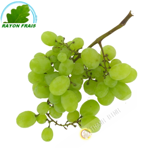 Raisin blanc (kg)