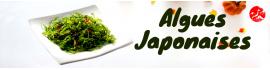 Algues JP