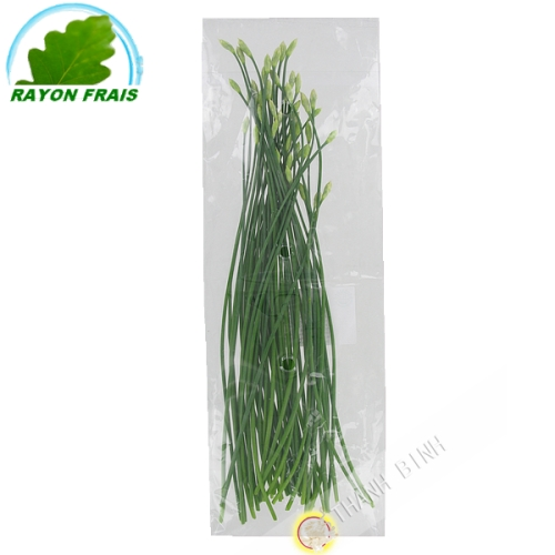 Flower of garlic Thailand (200g)- FRESH