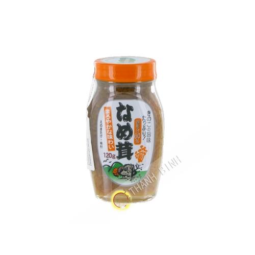 Enoki pilz maroyaka nametake vorbereitet TABLE LAND 120g Japan