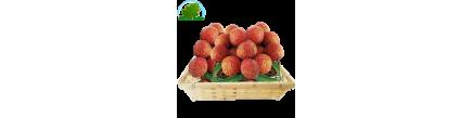 Lychee - Litchi - Vai Thieu Vietnam (kg)
