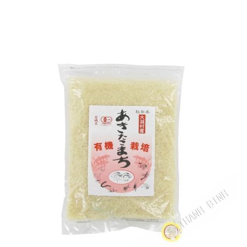 Arroz japonés akitakomachi IKIIKI 1kg Japón