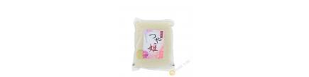 Riz japonais shimane NUMATA 1kg Japon