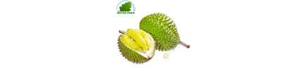 Durian, Vietnam (room)- COST - Approx. 2kgs