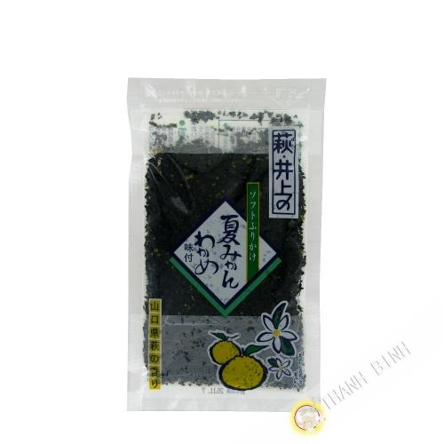 Assaisonnement pour riz chaud furikake INOUIE 70g JP