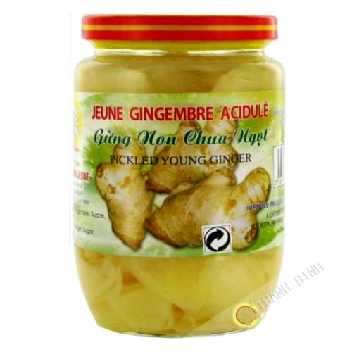 Jeune gingembre acide DRAGON OR 390g Vietnam