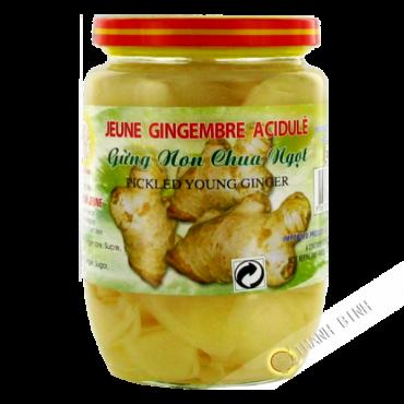 Jeune gingembre acide 390g