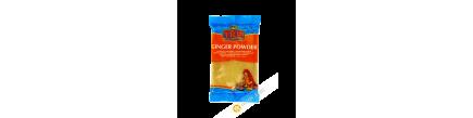 Gingembre en poudre TRS 100g Inde