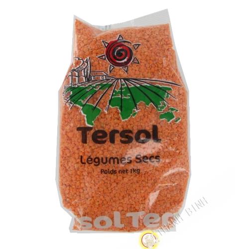 Lens coral TERSOL 1kg