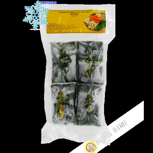 El arroz pegajoso con mango en leche de coco 600g