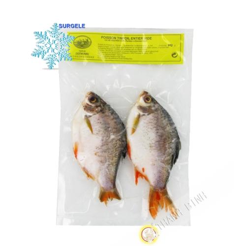 Fisch Tinfoil kg