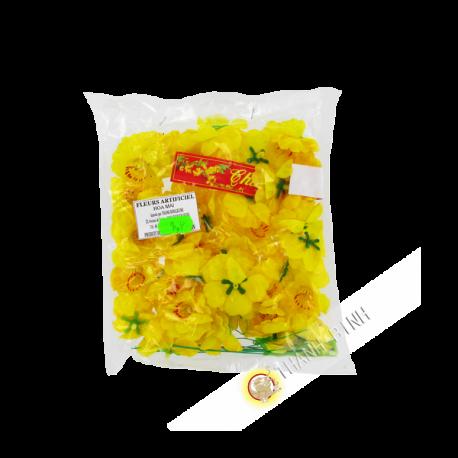 Fleur Jaune - Hoa Mai