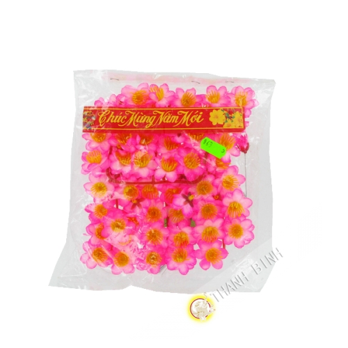Fleur Rose Hoa Dao pour Nouvel An Vietnam