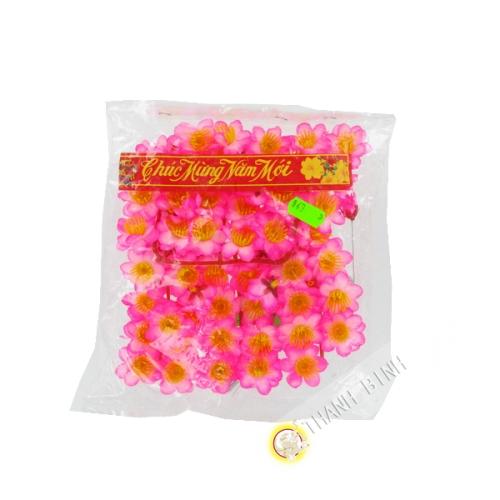 Rosa blume Hoa Dao für das Neue Jahr in Vietnam