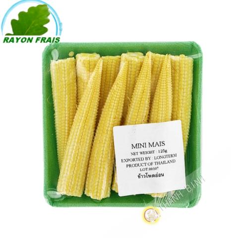Corn mini