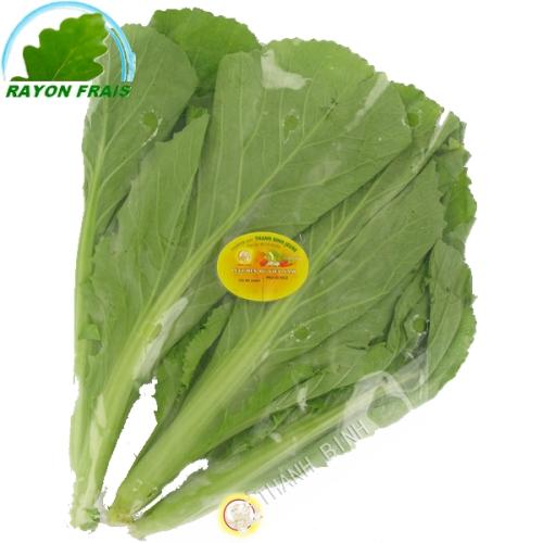 La mostaza de Vietnam (kg)