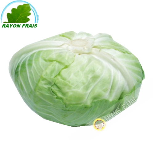 White cabbage, Japanese (kg)