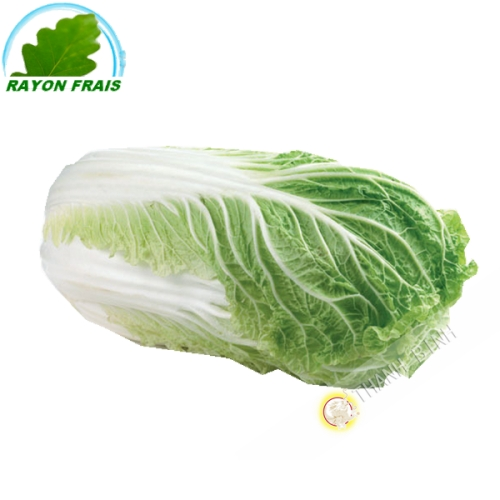 Chinese cabbage (kg)
