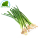 Chives 100g