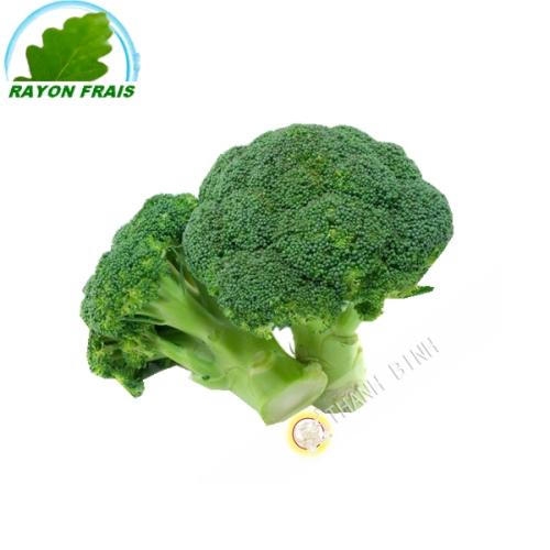 Brokkoli (kg)
