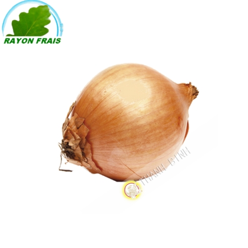 Cipolla bianca (kg)