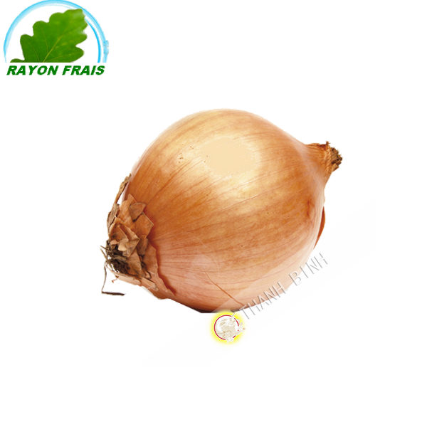 White onion France 500g - FRESH -