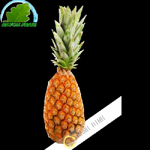 Ananas Benin (kg)