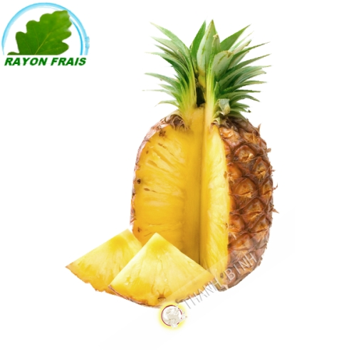 Pineapple Sweetie (piece)