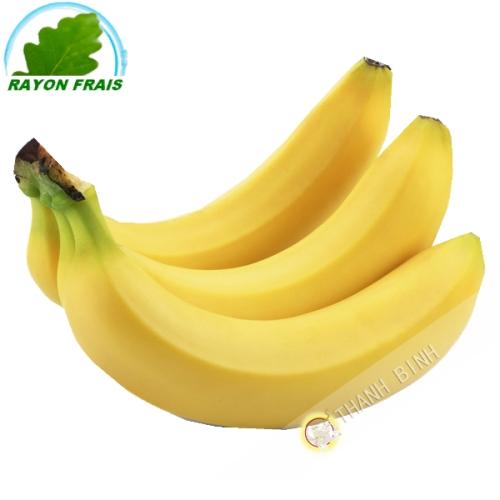 Banane Martinique (kg)