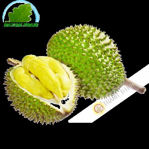 Durian Vietnam habitación (entre 1,5 kg y 2rey)