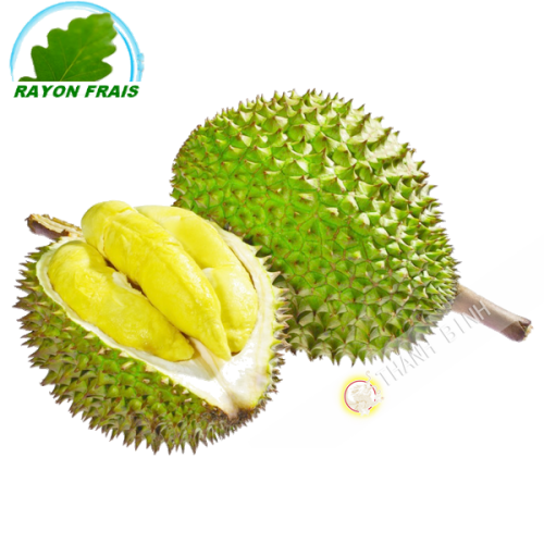 Durian Vietnam room (between 1.5 kg and 2kgs)