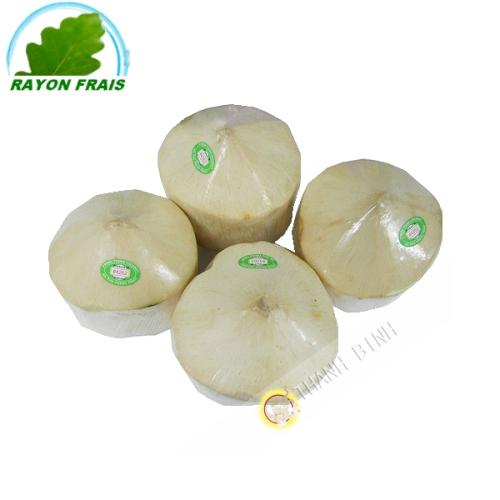 新鲜的椰子(件)