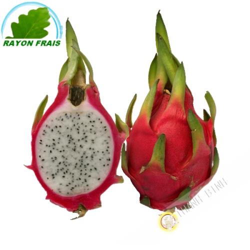 Fruit Dragon - Pittaya (pièce)- FRAIS - Env. 700g