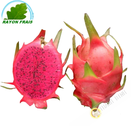 Fruit du Dragon rouge - Pittaya rouge (kg)
