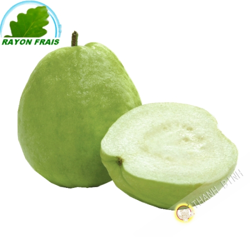 Guava Vietnam (1 pieces)- FRESH - Approx. 350g