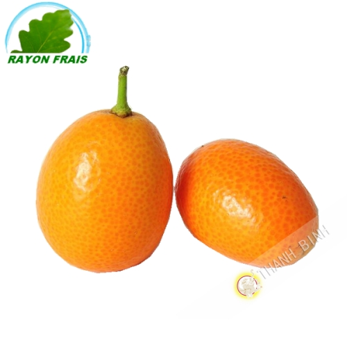 Kumquat Spain (300g)- COSTS