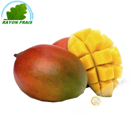 Mango Kent (part)- COST - Approx. 500g