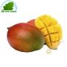 Mango Kent (stück)- KOSTEN - Ca. 500g