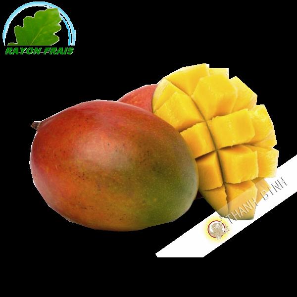 Mango Kent (parte) COSTO Aprox. 500g