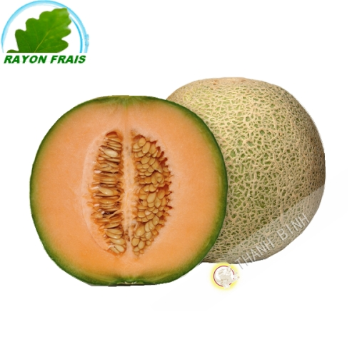 Melon ( pièce)