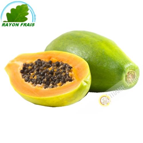 Papaya GM Brazil (room)- COST - Approx. 1,2 kgs