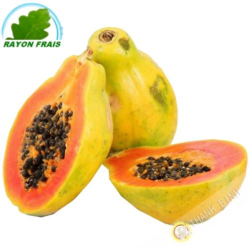 Papaye Pm (kg)