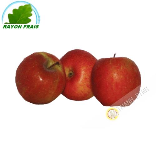 Fuji apple (kg)