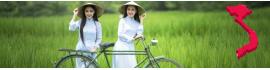 Produits du Vietnam