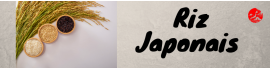 Rice JP