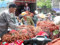 Vải thiều ở Bắc Giang nhập khẩu vào Pháp được xử lý như thế nào?